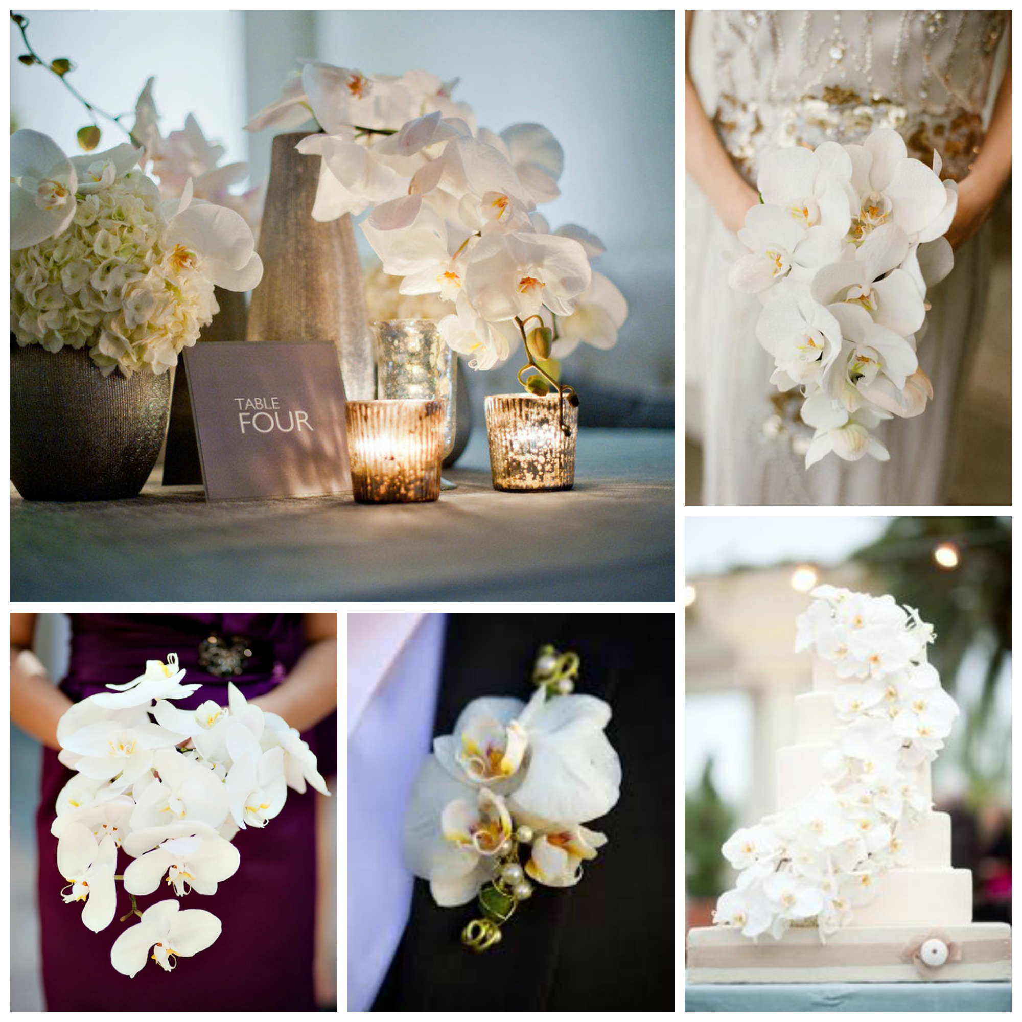 white wedding orchid bouquets centerpieces